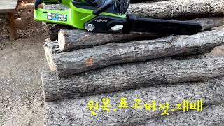 원목재배!자연산.표고버섯