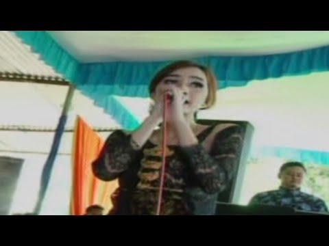 Bojo galak AREVA // SPL sound live bulukerto