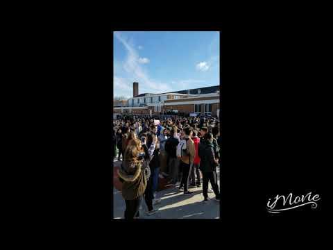 Livingston High School Student Walkout 2018