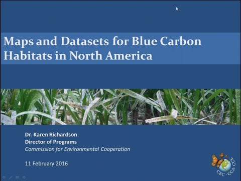 Maps And Datasets For Blue Carbon Habitats