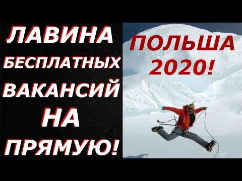 ЛАВИНА БЕСПЛАТНЫХ ВАКАНСИЙ ОТ ПРЯМЫХ РАБОТОДАТЕЛЕЙ! Польша 2020!