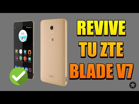 ZTE Flash videos - qXo9Vg2Z-VQ (Meet Gadget)