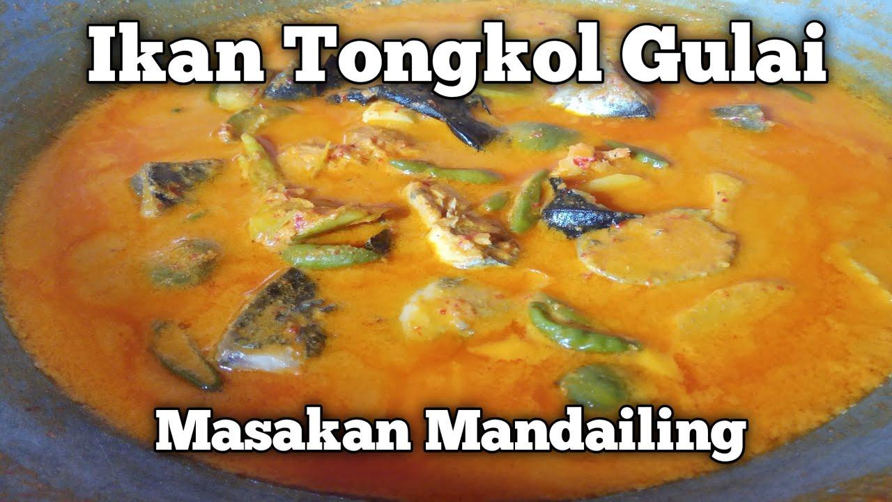 Cara Memasak Ikan Tongkol Gulai Masakan Mandailing Enak ...