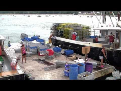Maine Lobster Fishing - Smack Boat, Casco Bay, Maine