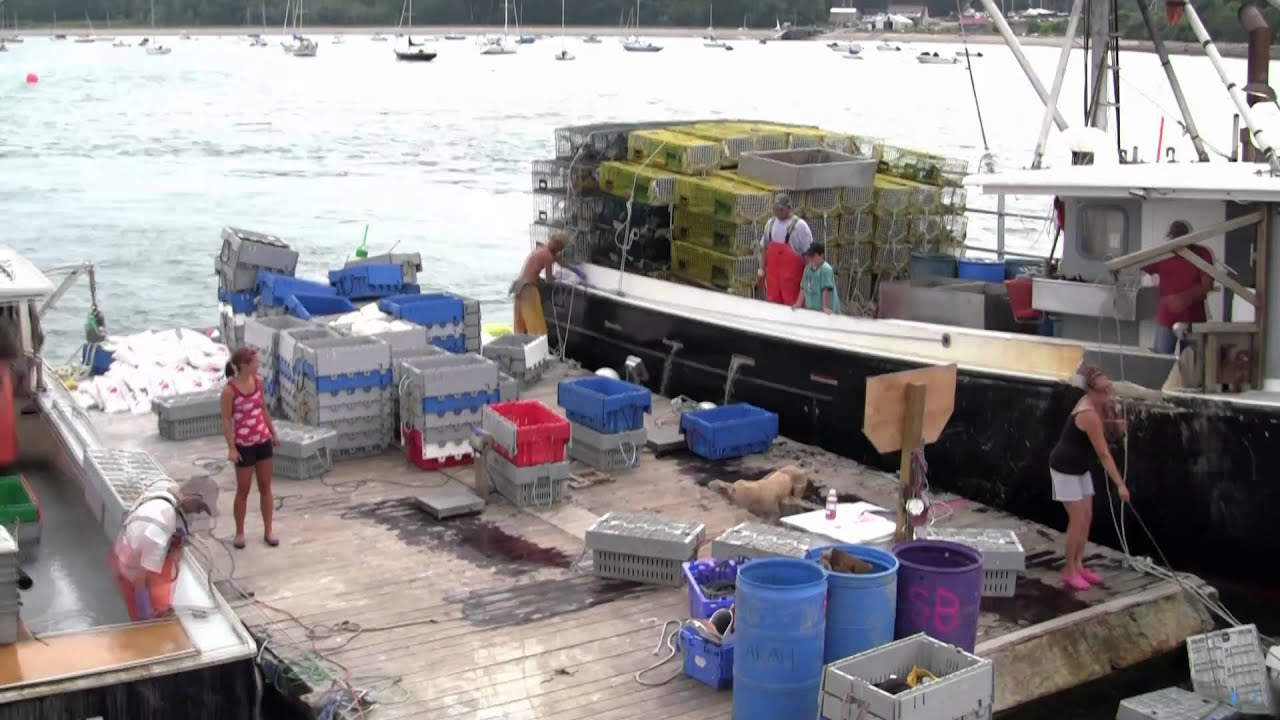 Maine Lobster Fishing - Smack Boat, Casco Bay, Maine - YouTube