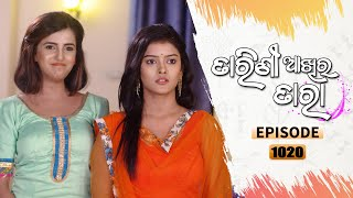 Tarini Akhira Tara | Full Ep 1020 | 11th May 2021 | Odia Serial - TarangTV