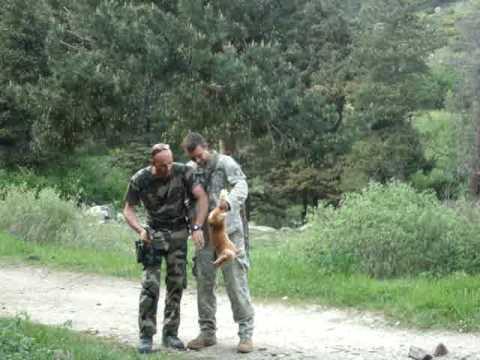 CNEC survival training