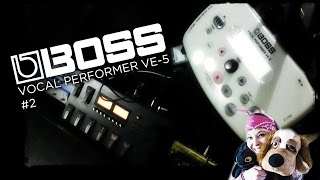 Boss VE-5 Vocal Effects #2 LIVING IN HARMONY!