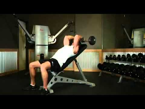 Triceps - Incline Barbell Triceps Extension Exercise Guide