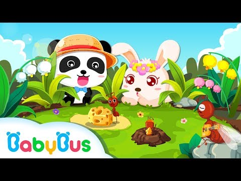 Ant Colonies  | Game Preview | Educational Games for kids | BabyBus