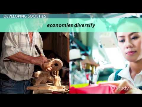 Types of Societies in Sociology   Video & Lesson Transcript