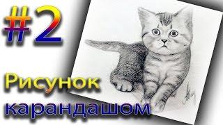 Рисуем карандашом котёнка