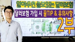 알아두면 쓸모있는 달러보험 2부 (달러보험 가입 시 꿀 TIP & 유의사항)