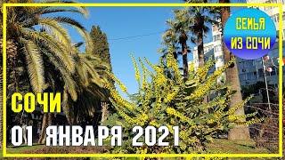 СОЧИ 1 ЯНВАРЯ 2021 ПРОГУЛКА ПО НАБЕРЕЖНОЙ Субтропический рай в отдельно вазятом городе