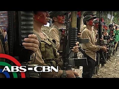 TV Patrol: DENR chief, gustong makatrabaho ang NPA