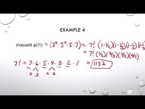 Euler Phi Function and iEuler's Theorem