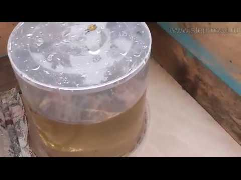 Дозированная кормушка для пчел