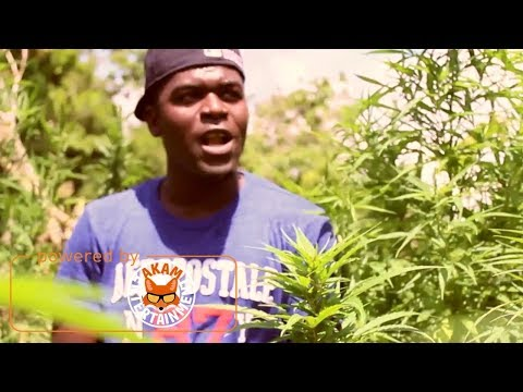 Wiseman - So High [Official Music Video HD]
