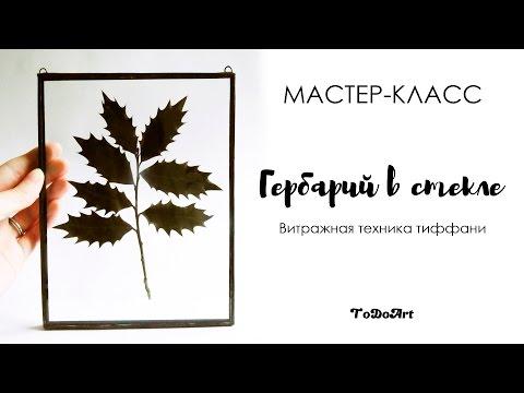 Видео обзор - Гербарий Сельскохозяйственные растения