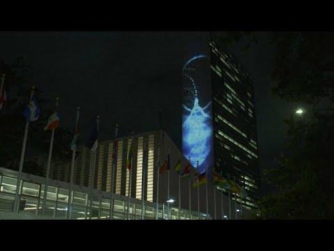 شاهد: إضاءة مبنى الأمم المتحدة بصور للأنواع البحرية  - نشر قبل 11 ساعة