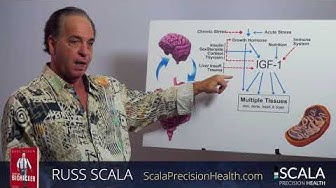 New Research on Testosterone and HGH replacement Therapy - Russ Scala
