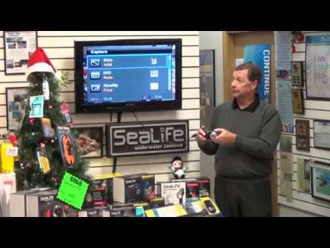 SeaLife Demos | SeaLife Sea Dragon Seminar - Part 2