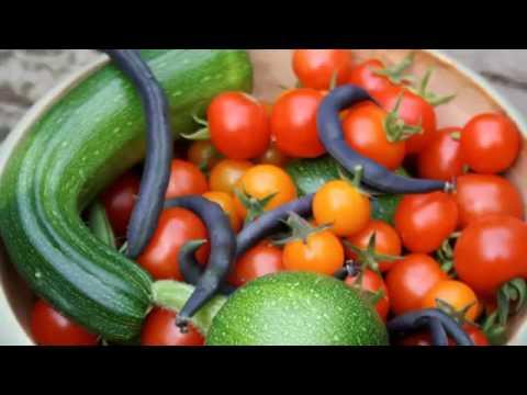 Vegetable Gardening For Dummies Basic Guide