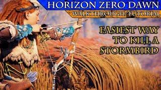 Horizon Zero Dawn: How to Easily Kill a Stormbird