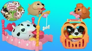 Chubby Puppies Pole Course Playset Dalmation, Terrier, Retriever, and Doodle love Playing in it!