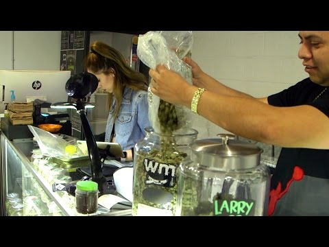 Buying Cannabis & Pressing Rosin at Club 5252, Los Angeles: Marijuana Dispensary Visit