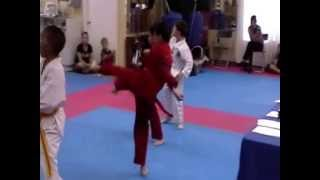 Dylan and Tyler Tae Kwon Do Kick Forms