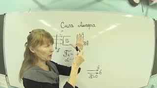 Физика Сила Ампера