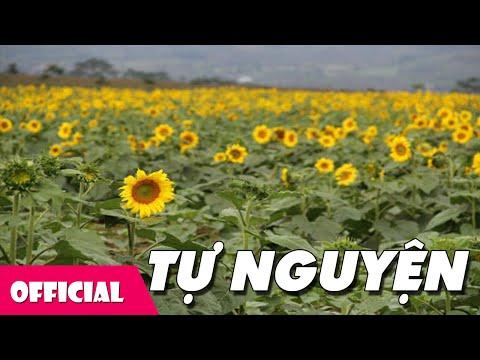 Tự Nguyện - Hương Giang [Karaoke Lyrics MV]