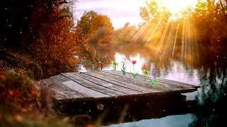 Bridge at Sunset - Still Photo Animation (DP Animation Maker)