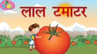 लाल टमाटर || Red tomatoes song || Nursery rhymes || Hindi rhymes