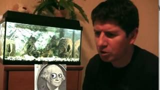светодиодная подсветка аквариума своими руками(Всевозможные поделки и не только изготовленные своими руками. Не дорогие гаджеты с Китая: http://www.gearbest.com/cell-ph..., 2015-03-28T13:52:45.000Z)