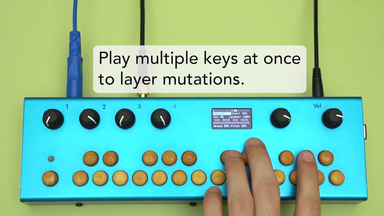 Organelle Patches Multiple Outlets On Switch Loop Page 2 Multi Effects