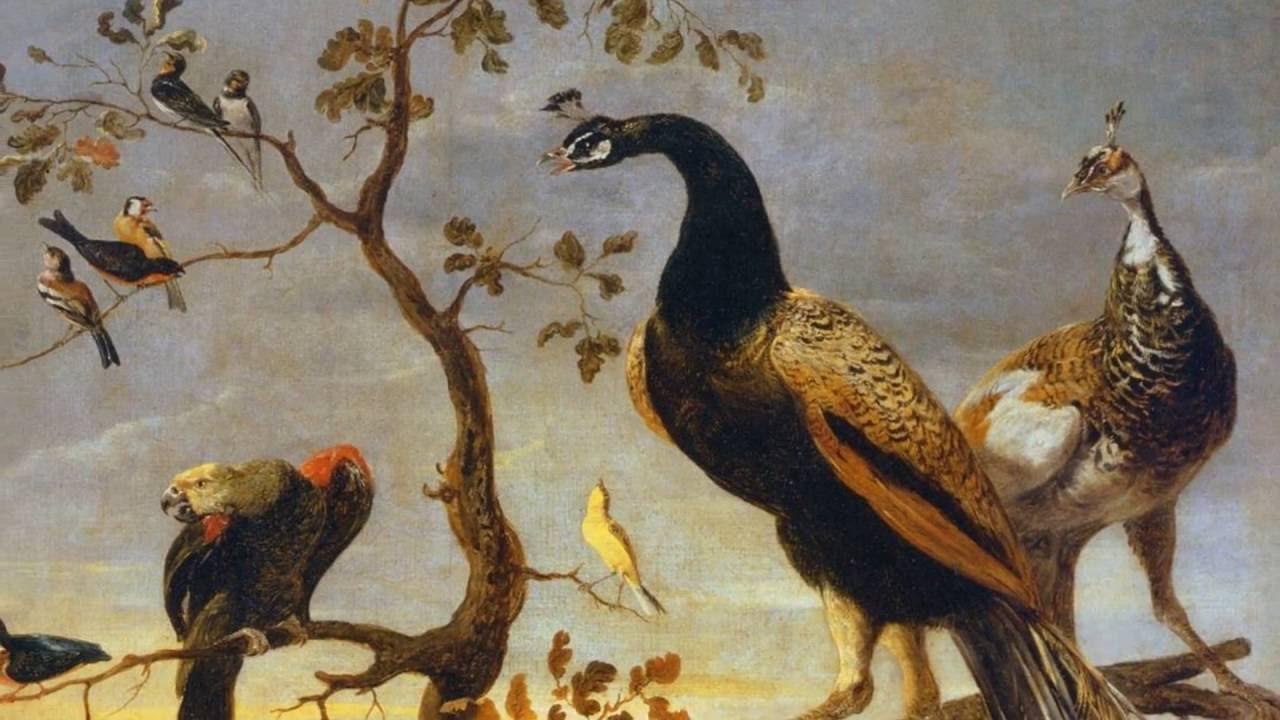 le chant des oiseaux janequin youtube