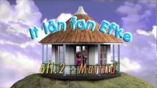 Lan fan Efke - tv leader