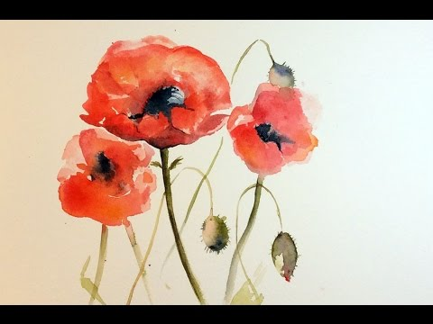 Watercolor poppies real time painting demonstration youtube watercolor poppies real time painting demonstration mightylinksfo