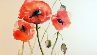 Watercolor Poppies REAL TIME Painting Demonstration