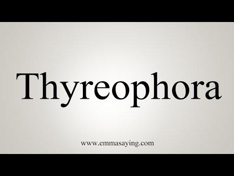 How To Pronounce Thyreophora
