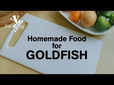 Homemade Food For Goldfish