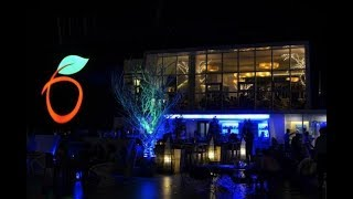 Dining at the Blue Elephant: Cebu Apple Tower - Philippines