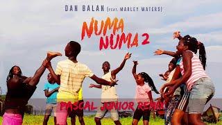 Dan Balan - Numa Numa 2 (feat. Marley Waters) | Pascal Junior Remix