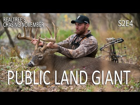 Public Land Giant, Incredible Buck Grunting   Chasing November S2E4