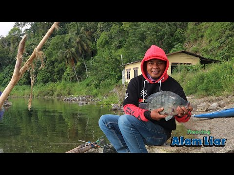 Catch And Cook Fresh Tilapia | Wild Fishing