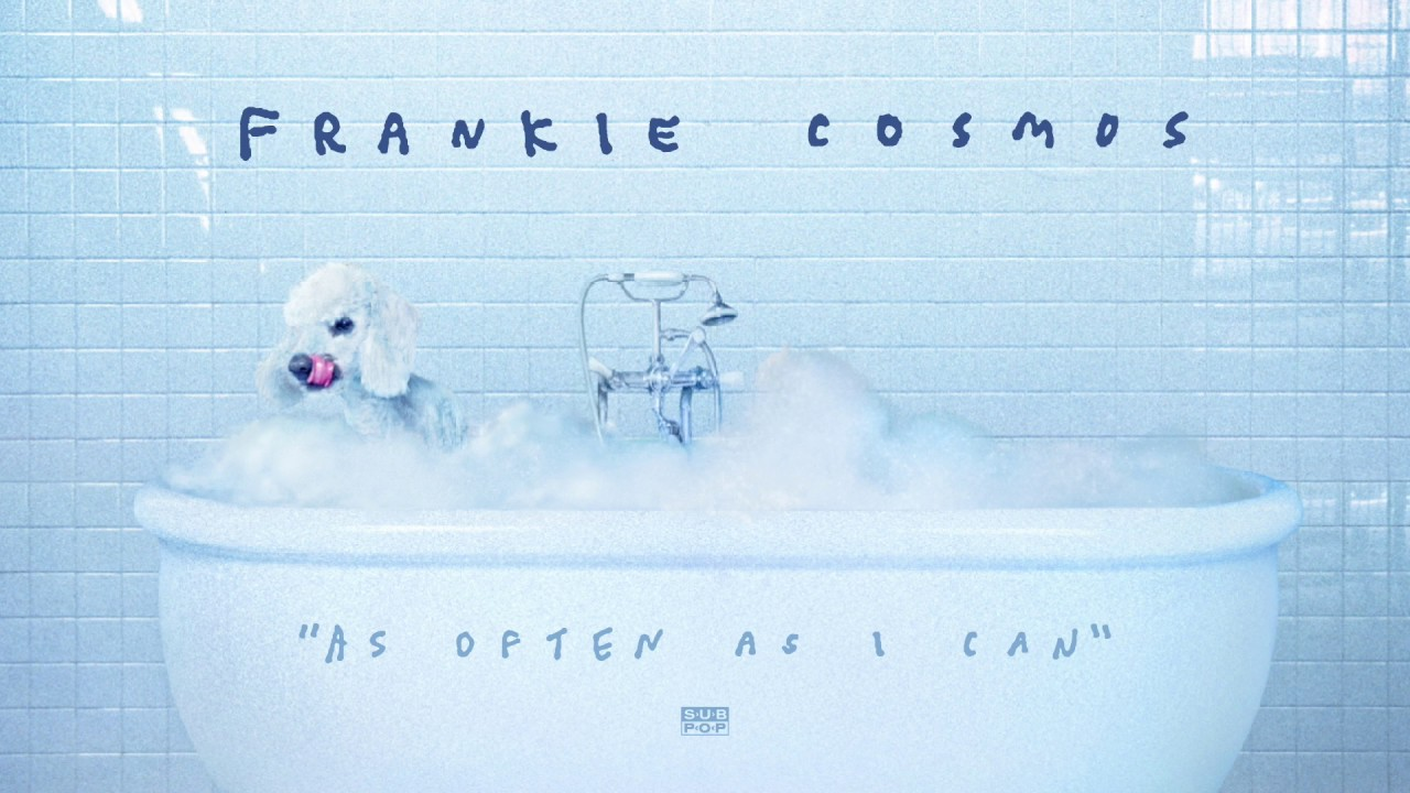 frankie-cosmos-as-often-as-i-can-sub-pop