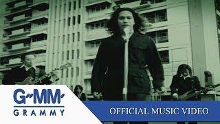 เพลงนี้เกี่ยวกับความรัก - SILLY FOOLS 【OFFICIAL MV】