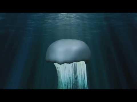 Birdemic 2  Jellyfish